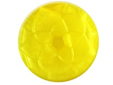 yellow pet canary mica