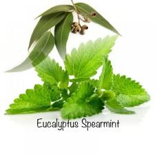 Eucalyptus Spearmint-1000x1000