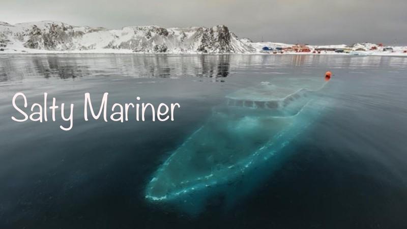 Salty Mariner