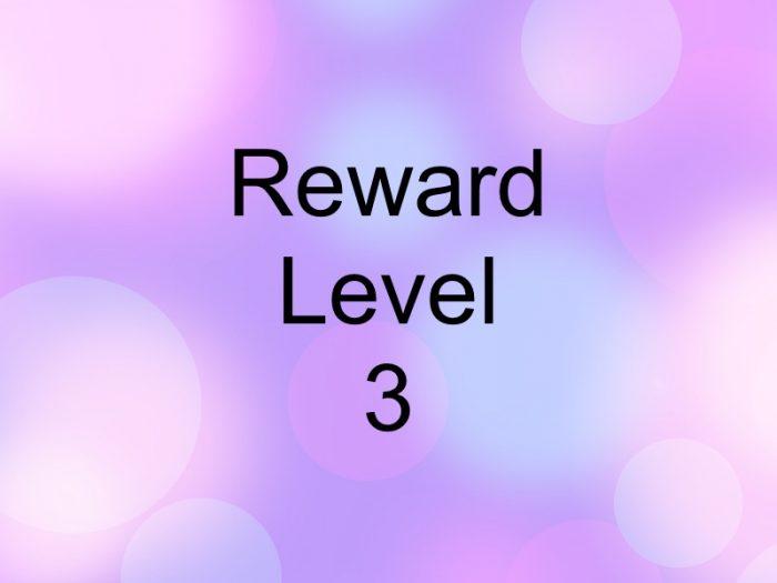 Reward Level-3